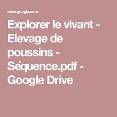 Explorer le vivant - Elevage de poussins - Séquence.pdf - GoogleDrive