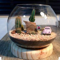 108 Likes, 15 Comments - Boutique Terrarium Vasos E MJ ( . Cactus Terrarium, Terrarium Bowls, Hanging Terrarium, Garden Terrarium, Terrarium Wedding, Lizard Terrarium, Terrarium Centerpiece, Terrarium Ideas, Mini Cactus Garden