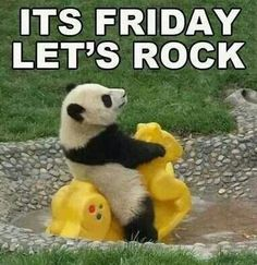 Its Friday. ..lets rock