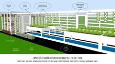 system infographic more aquaponics aeroponic fish tanks fish ...