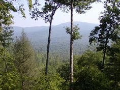 Murphy, NC : View from back porch of a friends' cabin in Murphy