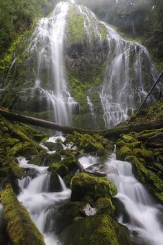 ✯ Proxy Falls - Cascade Mountains - Willamette National Forest - Central Oregon