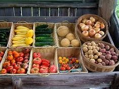 greens chilled retail display farm stand - Google Search