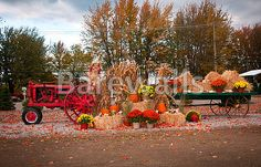 """""""Old tractor as fall harvest decor in yard"""" - Autumn posters and prints available at Barewalls.com"""