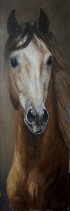 Modern Oil Painting: Paintings of horses – Maureen Hassen – Join the world of pin Pretty Horses, Horse Love, Beautiful Horses, Painted Horses, Horse Drawings, Art Drawings, Horse Artwork, Horse Portrait, Animal Paintings