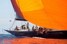 J Class Yacht, All About Water, Classic Sailing, Sail Away, Sailing Ships, Sailing Yachts, Wooden Boats, Saint Tropez, Modern Classic