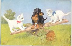 ML192 Illustrateur CHATS CHIEN BASSET TECKEL DACHSHUND DOG CAT KATZE