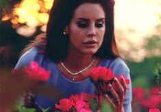 ON HIATUS | Lana Del Rey GIF hunt | ON HIATUS
