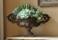 urn + succulents