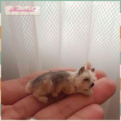 OOAK Hand Sculpted Realistic Miniature Dog Pet Animal Dollhouse 1:12th Scale Cat  | eBay