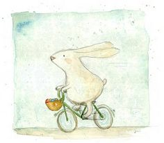 rabbit is on bike-( Írisz Agócs)