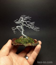 Large windswept wire bonsai tree by Ken To by KenToArt on deviantART