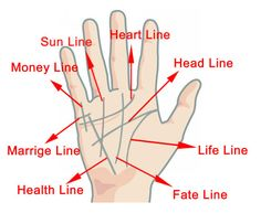 Palm Reading – Chinese Palmistry Guide & Basics of Hand Reading to Tell Fortune