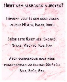 Miért nem alszanak a jegyek? :O /By Cat Admin/  . . . . . . #Aries #Kos #Taurus #Bika #Gemini #Ikrek #Cancer #Rák #Leo #Oroszlán #Virgo #Szűz #Libra #Mérleg #Scorpio #Skorpió #Sagittarius #Nyilas #Capricorn #Bak #Aquarius #Vízöntő #Pisces #Halak #Horoszkop #Horoszkopoldal #horoszkóp #csillagjegy #jegyek #csillagjegyek Sagittarius, Aquarius, Zodiac Signs, Astrology, Bff, Horoscopes, Funny, Quotes, Anime