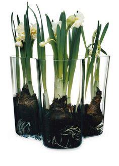 Alvar Aalto vase im glas aalto savoy vase small Alvar Aalto Vase, Design3000, New Bedroom Design, Interior Design, Colored Vases, Crystals In The Home, Crystal Vase, Industrial House, Flower Vases
