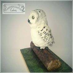Owl cake, uil taart, sculpted White owl, Snowy Owl, Hedwig, Harry potter owl cake. Uil, sneeuwuil taart, realistisch realistic . By Flappergasted Cakes