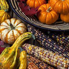 Garry Gay Art - Autumn abundance by Garry Gay Autumn Day, Autumn Theme, Fall Mantle Decor, Fall Decorations, Halloween Decorations, Pumpkin Pie Bars, Fall Scents, Autumn Aesthetic, Thing 1