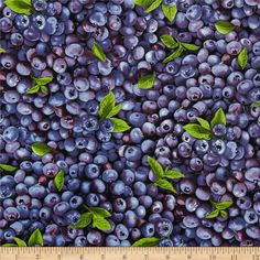 Farmer John Blueberry from @fabricdotcom  Designed by Paintbrush Studio for Fabri-Quilt, this cotton print is perfect for quilting, apparel and home decor accents. Colors include shades of purple, blue and green. This is not printed on organic fabric.