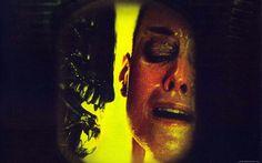 Download Alien vs Predator wallpaper (1024×768) - DopePicz