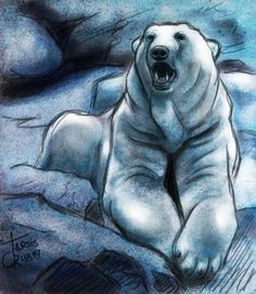 Polar Bear Sketch by ~Aleph777 on deviantART