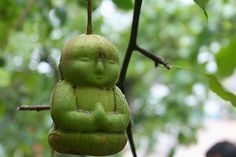 Spa Foodie: Baby Buddha Pear
