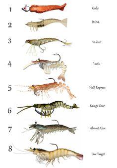 Best artificial shrimp lures