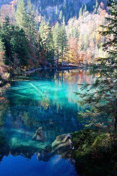 Der Blausee in der Schweiz. Einfach ein Traum!