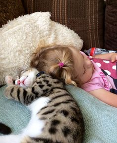Zzzzzzzzzzz niños con animales животные, кот y кошки in yand Cute Animal Quotes, Cute Animal Videos, Cute Animal Pictures, Animals For Kids, Cute Baby Animals, Funny Animals, Gatos Cats, Baby Sloth, Cute Animal Drawings