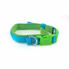 Image for Brights Padded Nylon Collar Green and Blue from Pets At Home