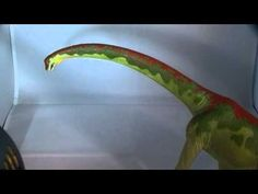 Carnegie Collectibles Brachiosaurus Review by Everything Dinosaur!