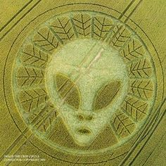 A new crop circle has appeared inReigate Hill, Surreyaccording to a recent report. While the reports are still recent and not much is known about the circle, including specific details about the formation that could