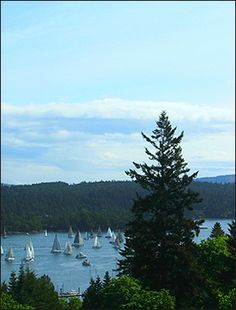 A single beautiful suite and harbor views near Ganges are offered at this Salt Spring Island Bed & Breakfast