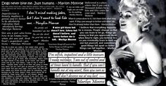 All my favorite Marylin Monroe Quotes