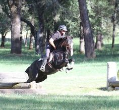 Showing Brilliant form and Natural Raw Talent which he passes on to his Offspring. Connemara Pony Stallion R Blue Moon. Truly one to watch and very special. Connemara Pony, Faster Horses, Hunter Jumper, Blue Moon, Dressage, Bradley Mountain, Ponies, Kentucky, Ranch