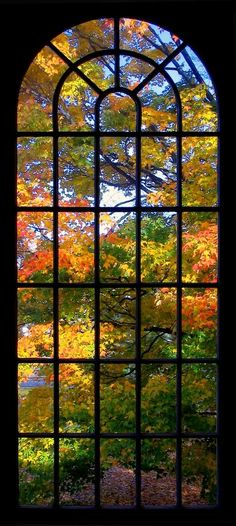Looking thru the window for The-Love-of-Colors!