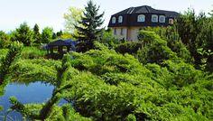 Zahrada jako přírodní park - pohoda na druhou :-) Cabin, Park, House Styles, Home Decor, Decoration Home, Room Decor, Cabins, Parks, Cottage