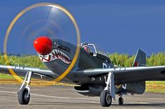 An admiration of the beauty of the classic warbirds.