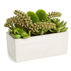 Sage & Co. Faux Succulent Garden In Cement Pot (379.550 IDR) ❤ liked on Polyvore featuring home, outdoors, outdoor decor, plants, fillers, flowers, interior, green, flower pot and garden flower pots