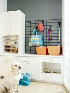 Create an All-in-One Feeding Station for your favorite friend! http://www.bhg.com/decorating/storage/projects/dog-showers-feeding-storage/?socsrc=bhgpin012115allinonefeedingstation&page=8