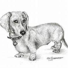 Drawings of Dogs Dachshund Arte Dachshund, Basset Dachshund, Dachshund Drawing, Dachshund Love, Dachshunds, Daschund, Weenie Dogs, Pet Dogs, Pets