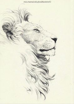 Lion tattoos hold different meanings. Lions are known to be proud and courageous creatures. So if you feel that you carry those same qualities in you, a lion tattoo would be an excellent match Leo Tattoos, Animal Tattoos, Small Tattoos, Elephant Tattoos, Small Lion Tattoo, Horoscope Tattoos, Mini Tattoos, Lion Tattoo Design, Lion Design