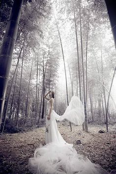 dreamy wedding dresses  photography to the forest.....