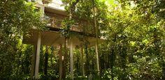Casa levantada no nível das árvores interage com a vida na Mata Atlântica - Casa e Decoração - UOL Mulher