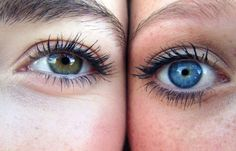 How to Use Coconut Oil to Get Longer Eyelashes