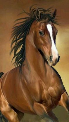 Bay Quarter Horse running. Gorgeous horse photography or is this a painting? Amazing shiny coat, beautiful face with white blaze. Horse Photos, Horse Pictures, Animal Pictures, Most Beautiful Horses, All The Pretty Horses, Beautiful Things, Beautiful Creatures, Animals Beautiful, Cute Animals