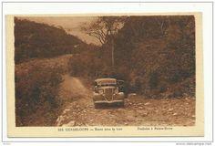 Guadeloupe - Route de Deshaies à Pointe Noire Sous Le Vent, France, Photos, Album, Island, History, Blog, Nature, Painting