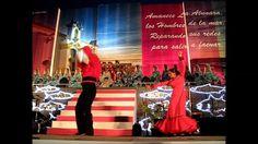 This beautiful flamenco is from the feria 2013,La Linea de la Concepción,Spain.