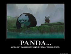 Google Image Result for http://www.deviantart.com/download/302607443/kung_fu_panda_motivational_poster_1_by_meowmeowmeow21-d505xeb.jpg