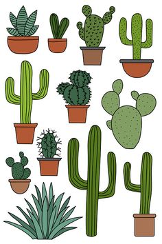 Cactus Clipart Set - Hand Drawn Clip Art Illustrations of cacti for download. Vector, JPG and PNG formats.