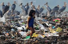 A rag picker stands on a garbage dump near Deepor Beel Wildlife Sanctuary on the outskirts of Guwahati, Assam. Greater Adjutant Storks, an endangered species found mostly in Assam are seen in the background. (NYT)